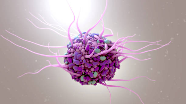 Dendritic cell 3d illustration Dendritic cell biological cell stock pictures, royalty-free photos & images