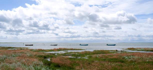 dänemark: vier ankern angelboote/fischerboote in der bucht bei bloeden hale - angeln dänemark stock-fotos und bilder