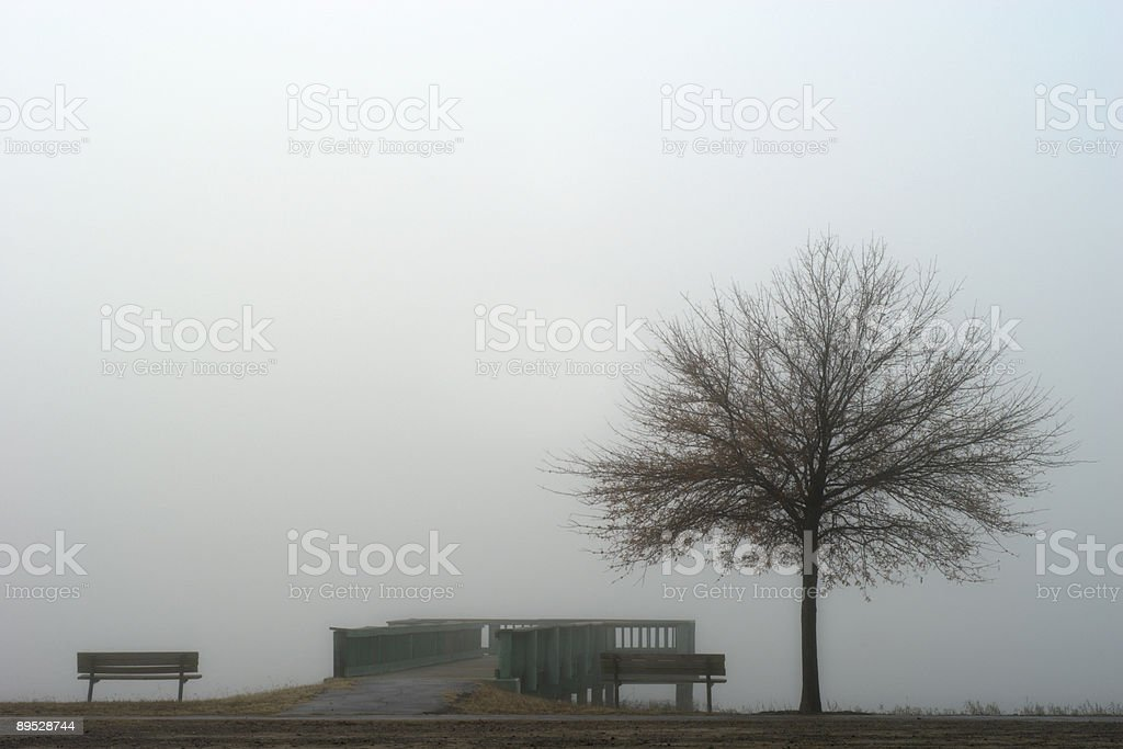 Dense Fog at the Lake royalty-free stock photo