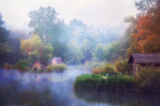 dichter nebel engulfing kleiner fischteich - teichfiguren stock-fotos und bilder