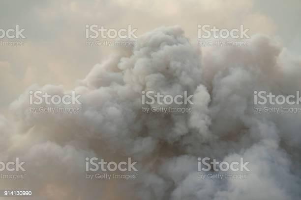 Photo of Dense white smoke