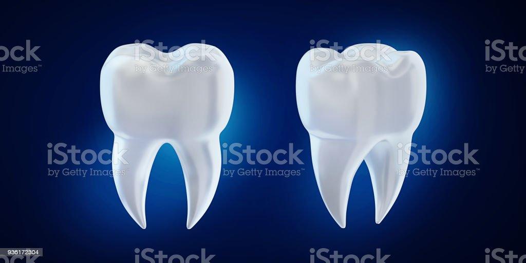 Berühmt 3d Zahnanatomie Bilder - Menschliche Anatomie Bilder ...