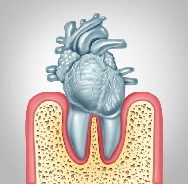 Dental Care Heart Disease stock photo
