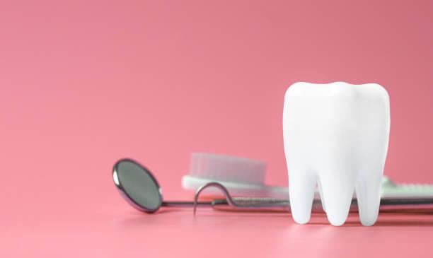 Dental-Modell und zahnärztliche Ausrüstung auf rosa Hintergrund, Konzeptbild des zahnärztlichen Hintergrunds. – Foto
