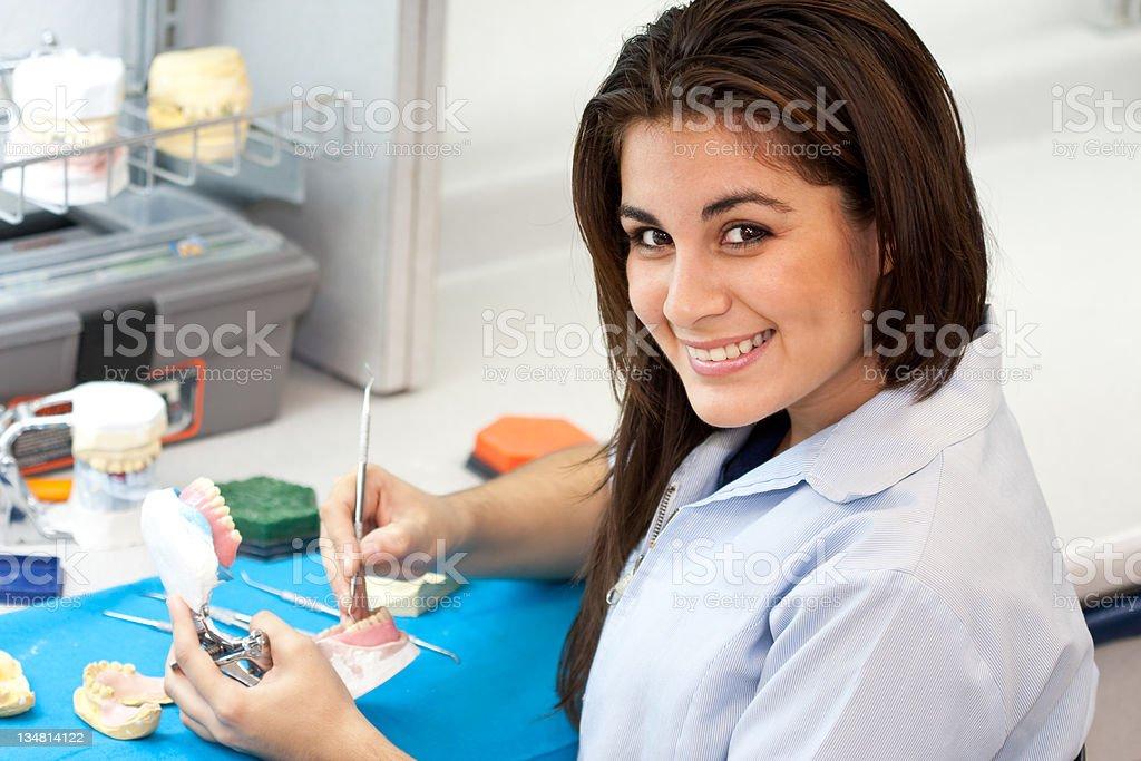 Dental profession royalty-free stock photo