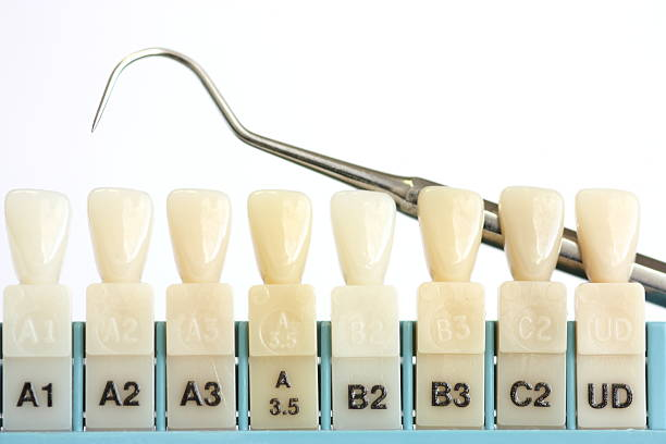 Top 60 tooth color chart stock photos pictures and images istock