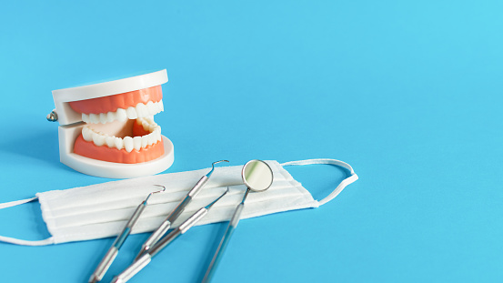 Dental tooth model with dentistry tools for teeth dental care and treatment on blue background. Oral dental hygiene concept. Copy space.
