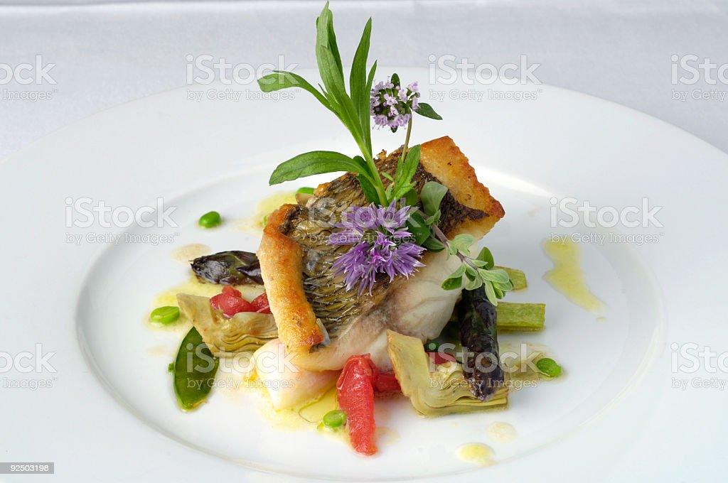 Dentex fish royalty-free stock photo