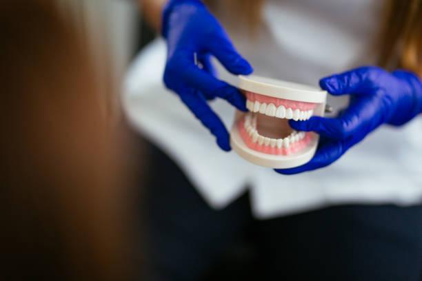 tandläkare innehav protes - protesutrustning bildbanksfoton och bilder