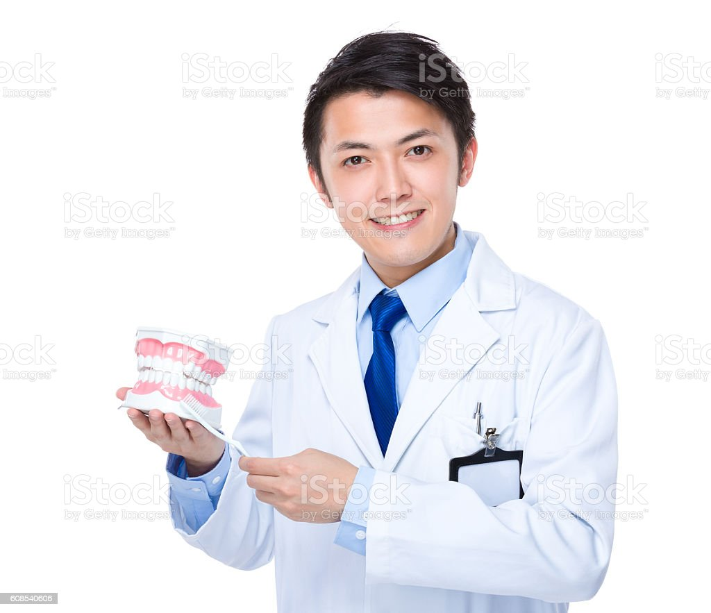 Dentist holding dentures and toothbrush stock photo