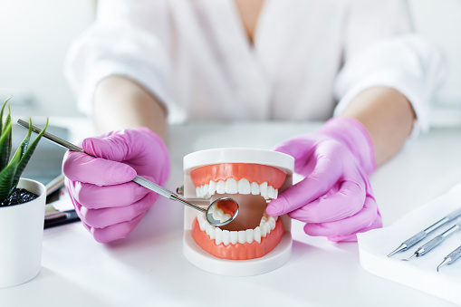 Dentist holding model of teeth denture and explain with angled mirror to patient at dentist's office. Teeth care and treatment concept.