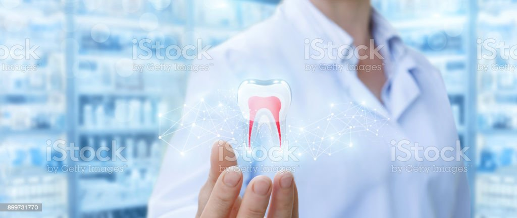 Dentist showing tooth model . stock photo