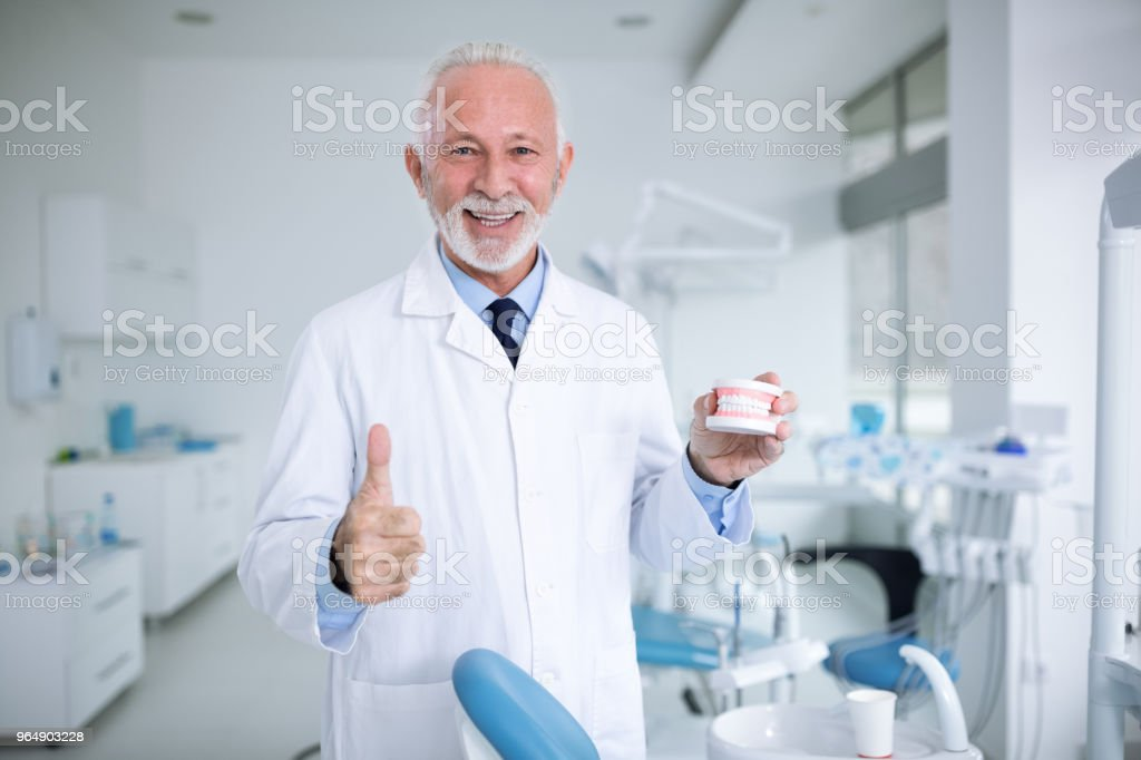 Dentist shows how healthy and proper teeth should look royalty-free stock photo