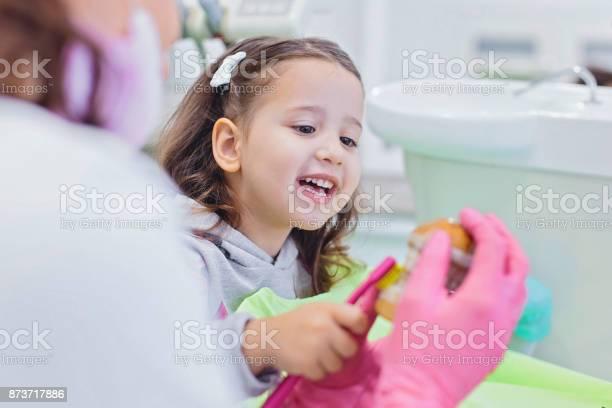 Zahnarzt Lehre Niedliche Mädchen Über Mundhygiene Stockfoto und mehr Bilder von Zahnarzt