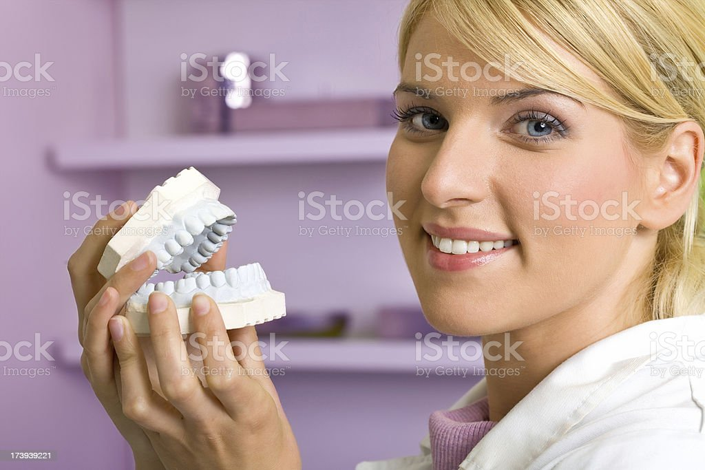 Dentist with reproduction model teeth stock photo