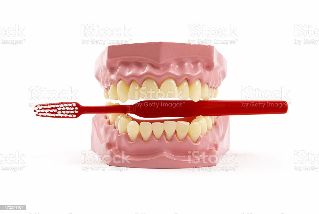 Dentures and Toothbrush royalty-free stock photo