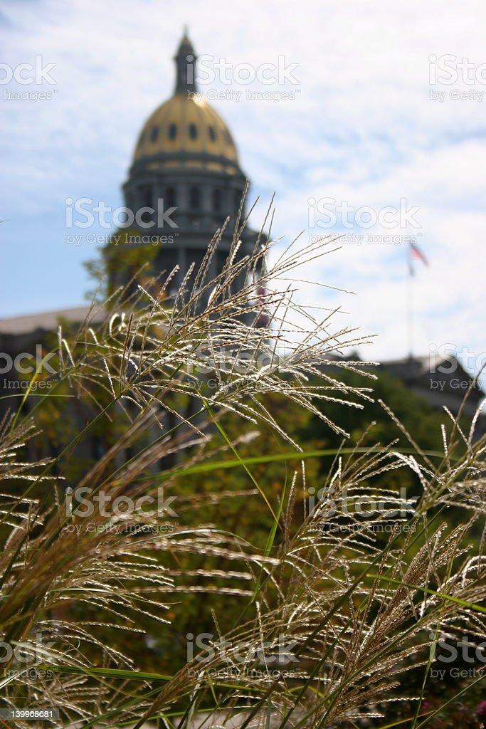 Denver Capitol Building stock photo
