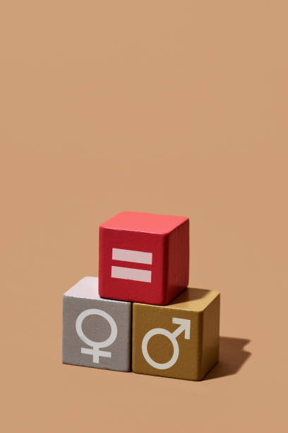 depiction of gender equality with toy blocks stock photo
