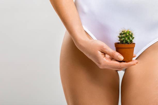 depilation in the bikini zone. a woman holding a cactus in her hand - bikini zdjęcia i obrazy z banku zdjęć