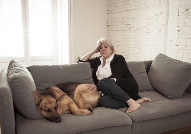 Depressed senior old woman crying on couch with pet dog as only Companion. Sad and tired widower amid COVID-19 pandemic. Coronavirus death, lockdown, social distancing and Mental health. Depressed senior old woman crying on couch with pet dog as only Companion. Sad and tired widower amid COVID-19 pandemic. Coronavirus death, lockdown, social distancing and Mental health. amid stock pictures, royalty-free photos & images