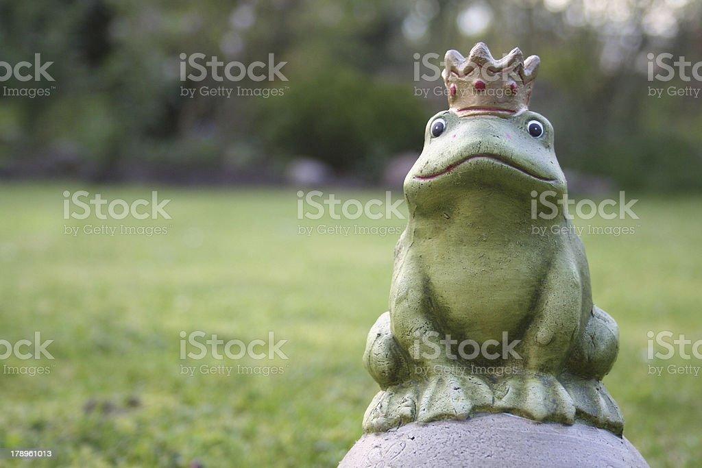 Der Froschkönig stock photo