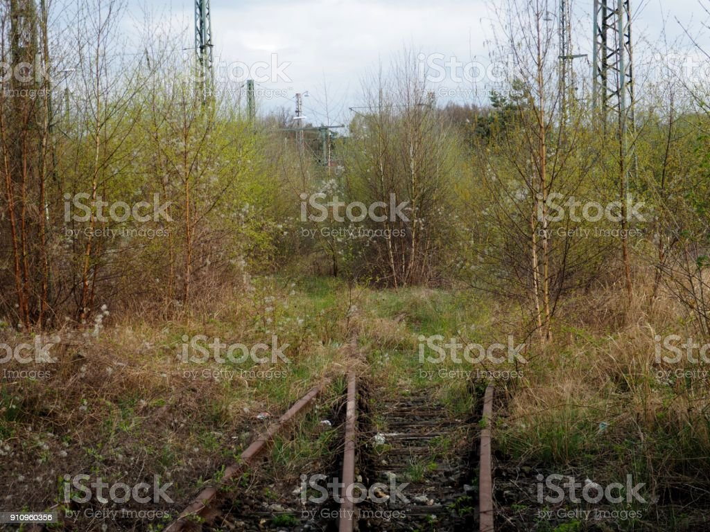 Der Weg ins Grüne stock photo