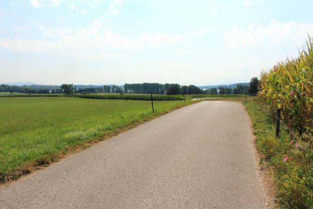 Der Weg ist das Ziel geteerte Straße führt durch die Landschaft ziel stock pictures, royalty-free photos & images