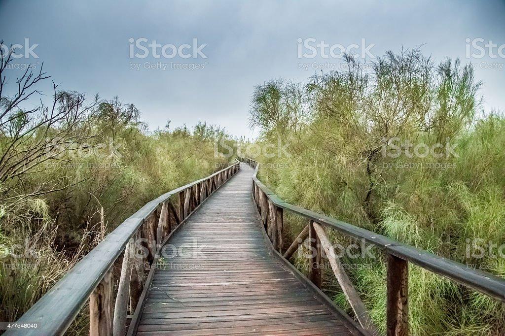 Der Weg stock photo