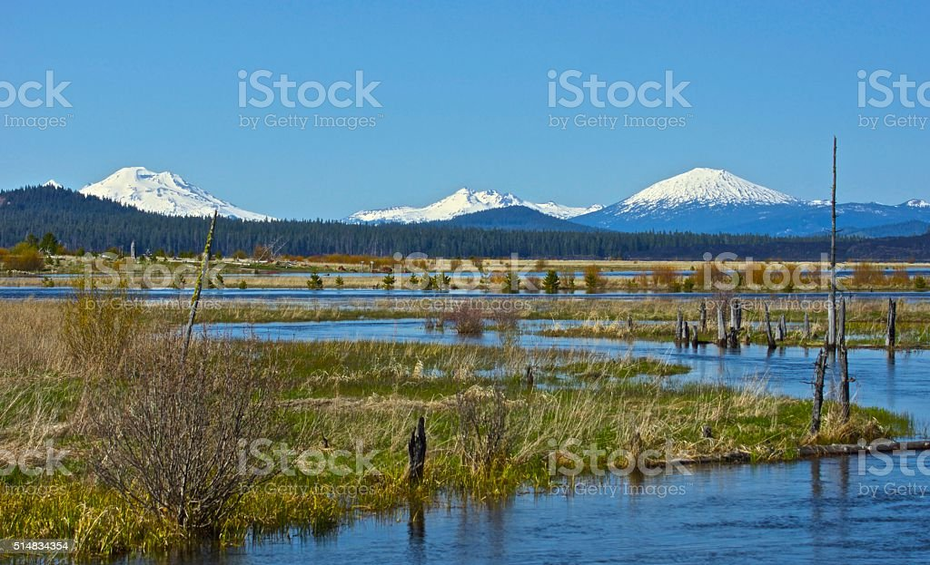 Deschutes National Forest stock photo