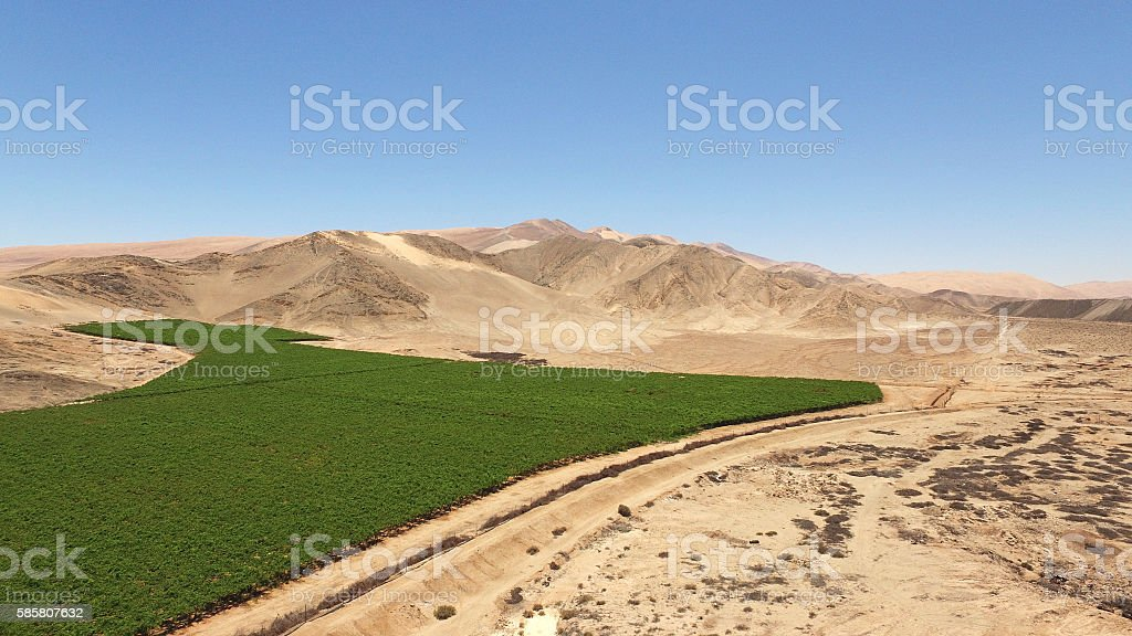 desert agriculture aerial stock photo