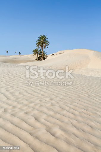 Sand Dunes near Douz (Kebili province) in Tunisia the gateway to the Sahara. Zaafrane, 12 km of Douz, where some ghostly ruins testify to a village swallowed up by the sands. Douz is a town in the Kebili Governorate in the south of Tunisia, known as the
