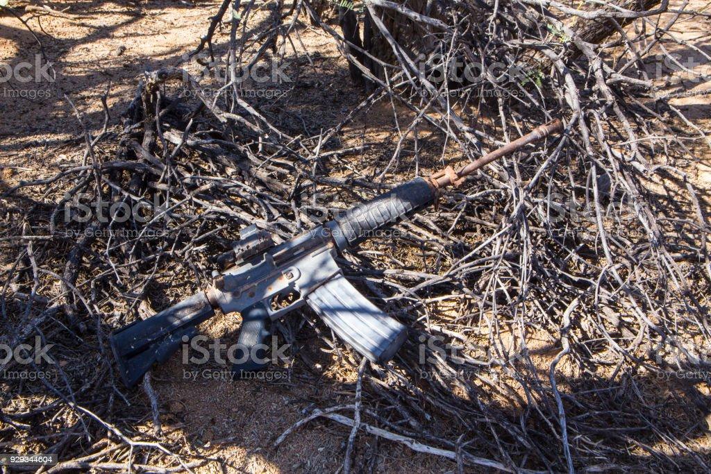 Desert AR 15