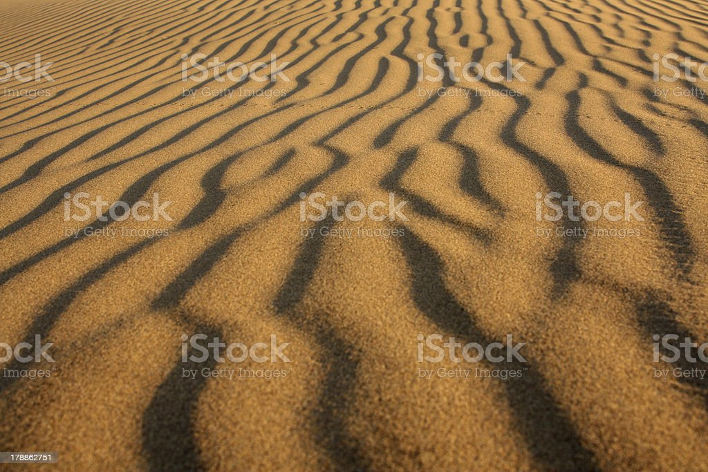 Desert background royalty-free stock photo
