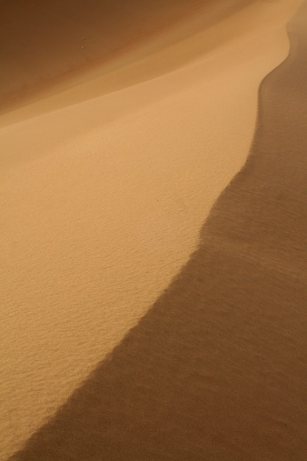 Rippled golden dunes in the Algeria
