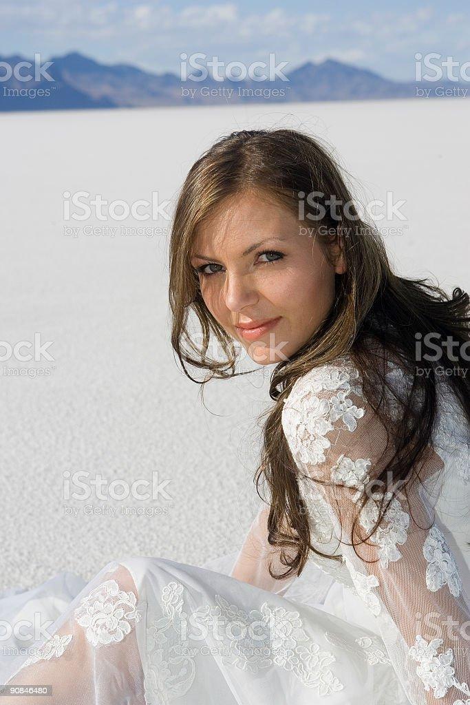 Desert Beauty stock photo