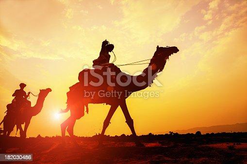 istock Desert Camel Caravan Silhouette at Sunset 182030486