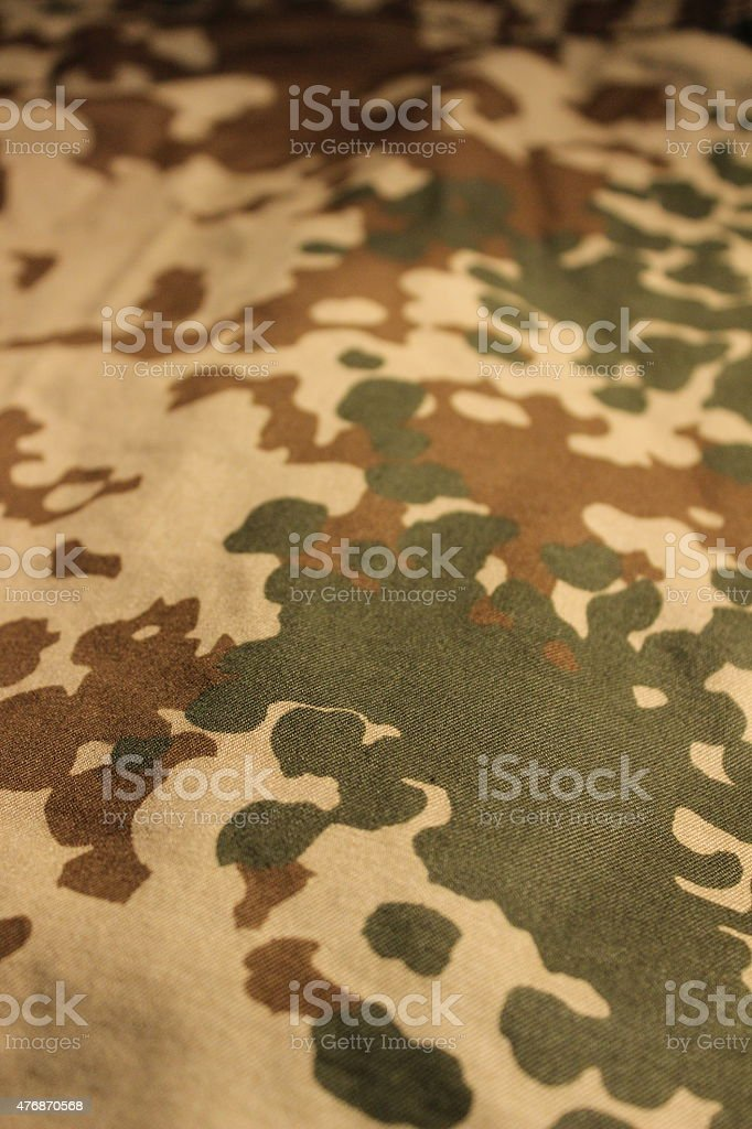 Desert flecktarn stock photo