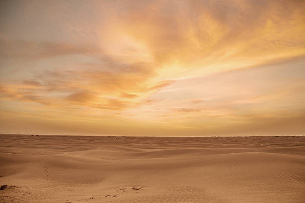 desert cloudscape - desert stock pictures, royalty-free photos & images