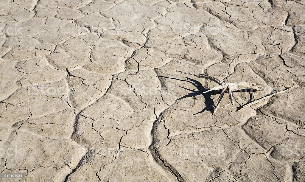 The cracked mud on the floor of a valley in Death Valley National...