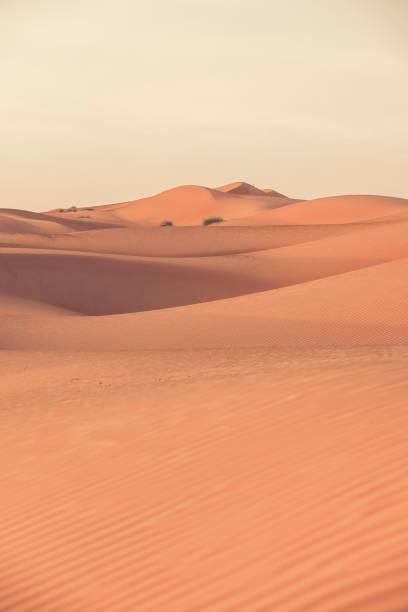 die Dünen der Wüste Wahiba Sands Wüste in oman – Foto