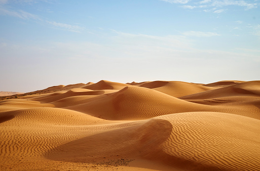 Path through sand dunes  to the atlantic ocean beach in the Huntington Beach State park, South Carolina, USA. Horizontal composition.
