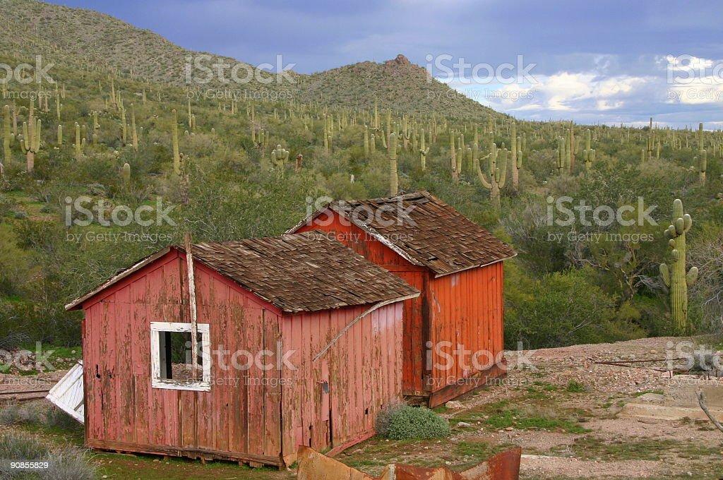 Desert Dwelling royalty-free stock photo