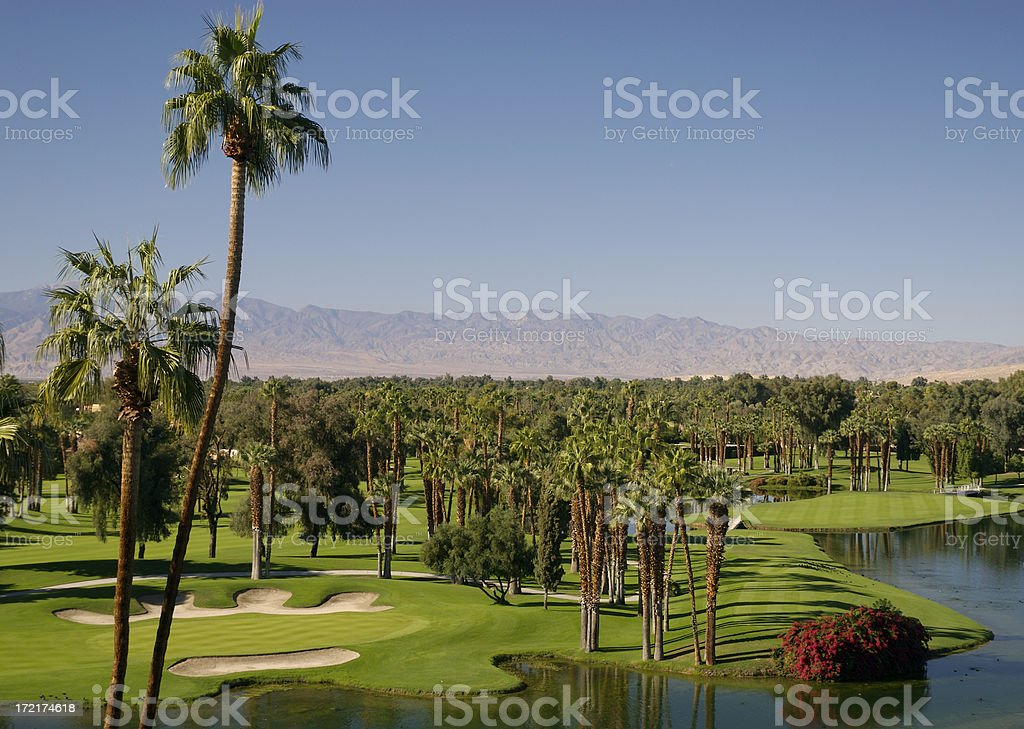 Desert Golf Series 5 royalty-free stock photo