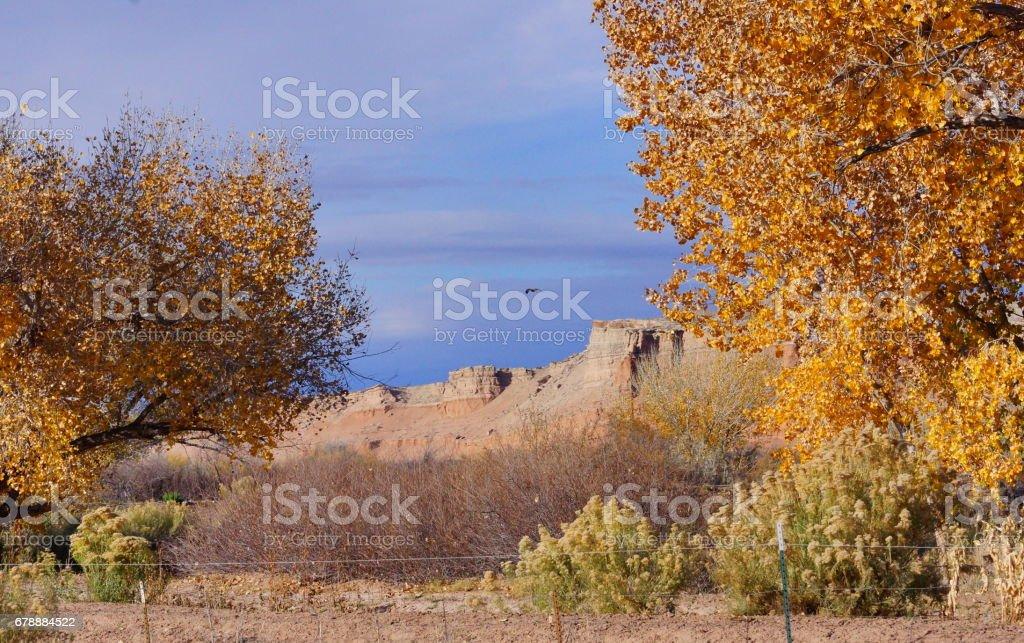 Çöl sonbahar Utah sahip. royalty-free stock photo