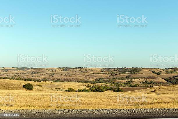 Desert. Hills covered with scattered trees
