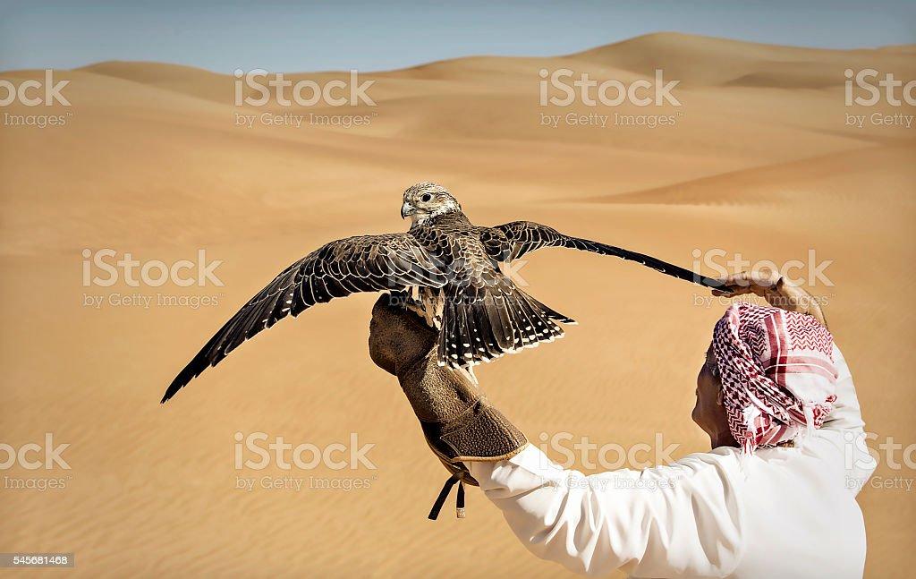 Desert hunting stock photo