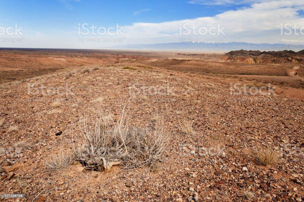 Desert  in Kazakhstan stock photo