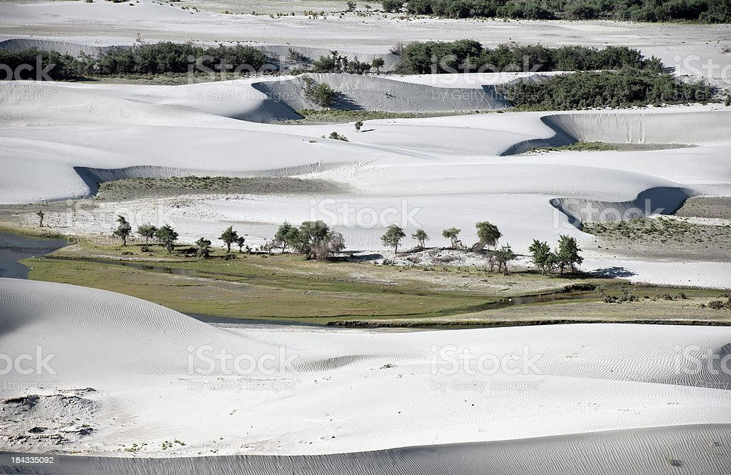 Desert in Nubra Valley Ladakh India stock photo