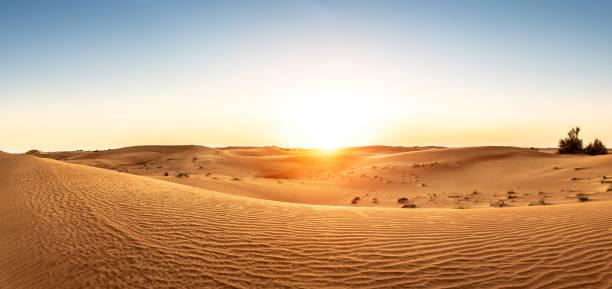 desierto en los emiratos árabes unidos al atardecer - desierto fotografías e imágenes de stock