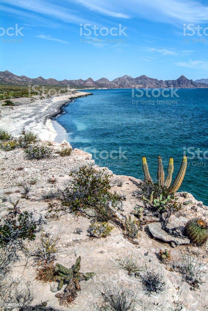 Playa de la isla del desierto - foto de stock